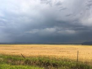 Montana_5237